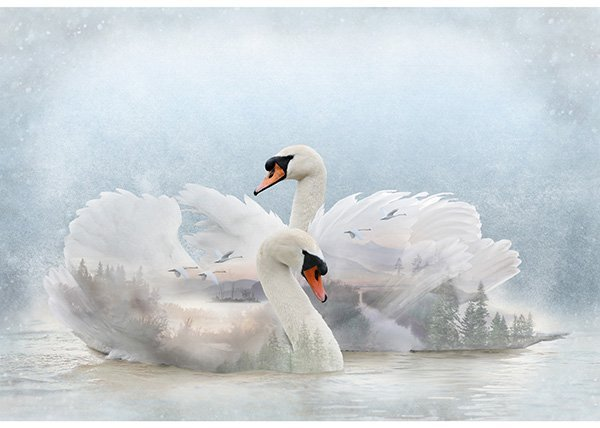Swan Panel - Call of the Wild 24810-311