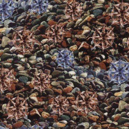 3698 Pebble by Judy Neimeyer