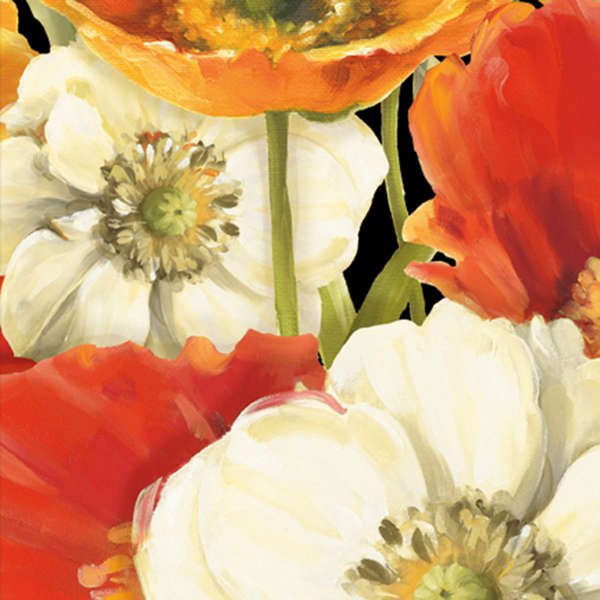 Poppy Love-Large Floral