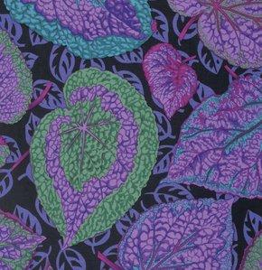 Philip Jacobs-Big Leaf-Purple