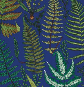 Snow Leopard Botanical-Ferns-Blue