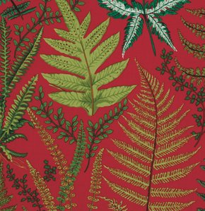 Snow Leopard Botanical-Ferns-Red