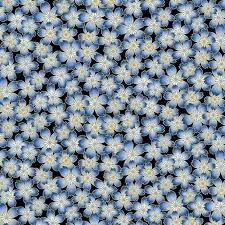 BUTTERFLY FANDANGO 1466M-52