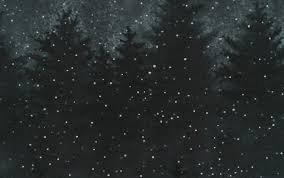 A CARDINAL CHRISTMAS P7599