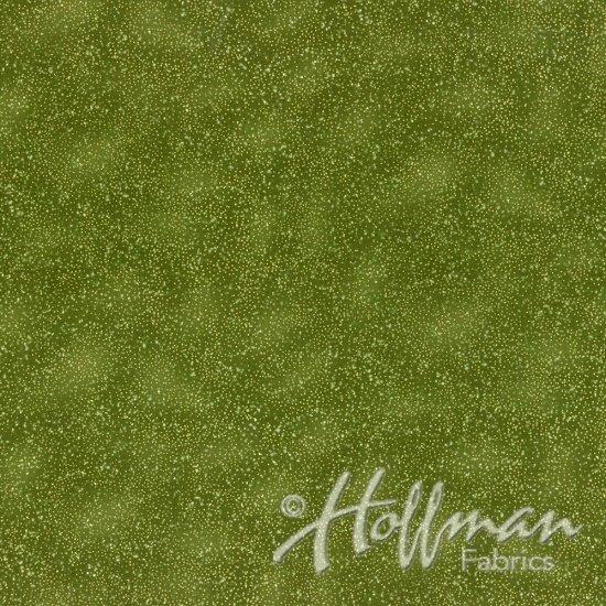 HOFFMAN BRILLIANT BLANDER OLIVE/GOLD