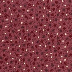 Frosty Friends Starry Sky red and brown stars on light red