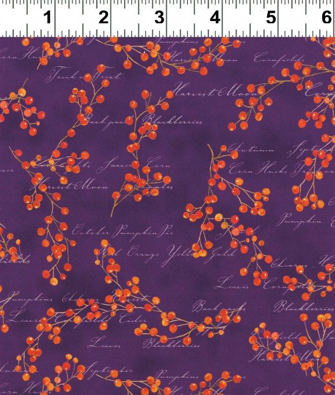 *Autumn Splendor berries on purple