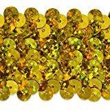2 Row Hologram Stretch Sequin Trim Gold