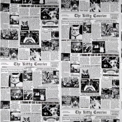 Cat News Newsprint Black Fabric