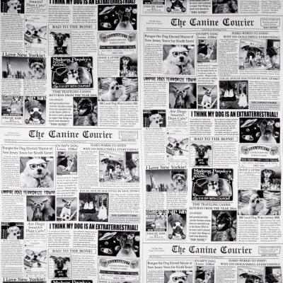 Dog News Newsprint Black Fabric