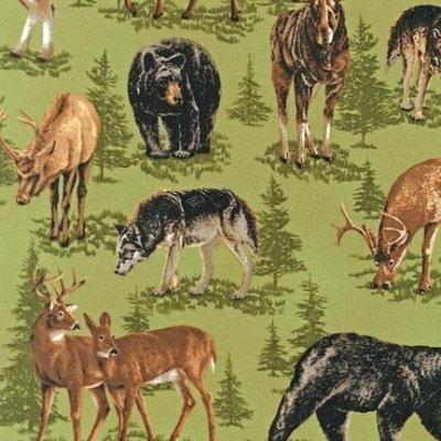 Nature Studies Flannel Spring Animals