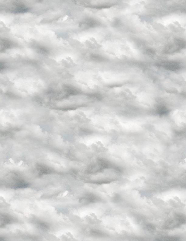 Farmstead Clouds Gray