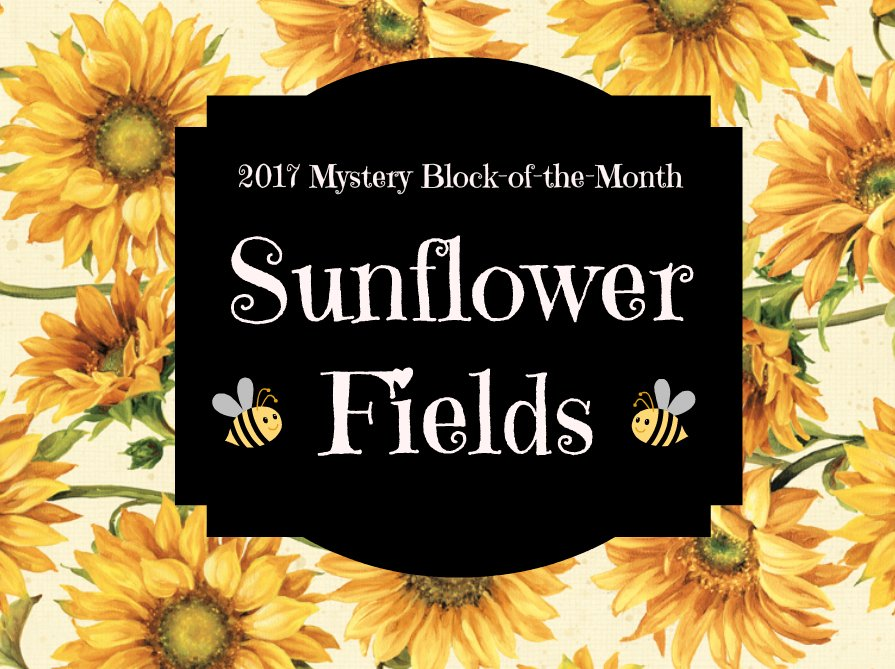 2017 Mystery Block-of-the-Month (For Meeting Attenders)