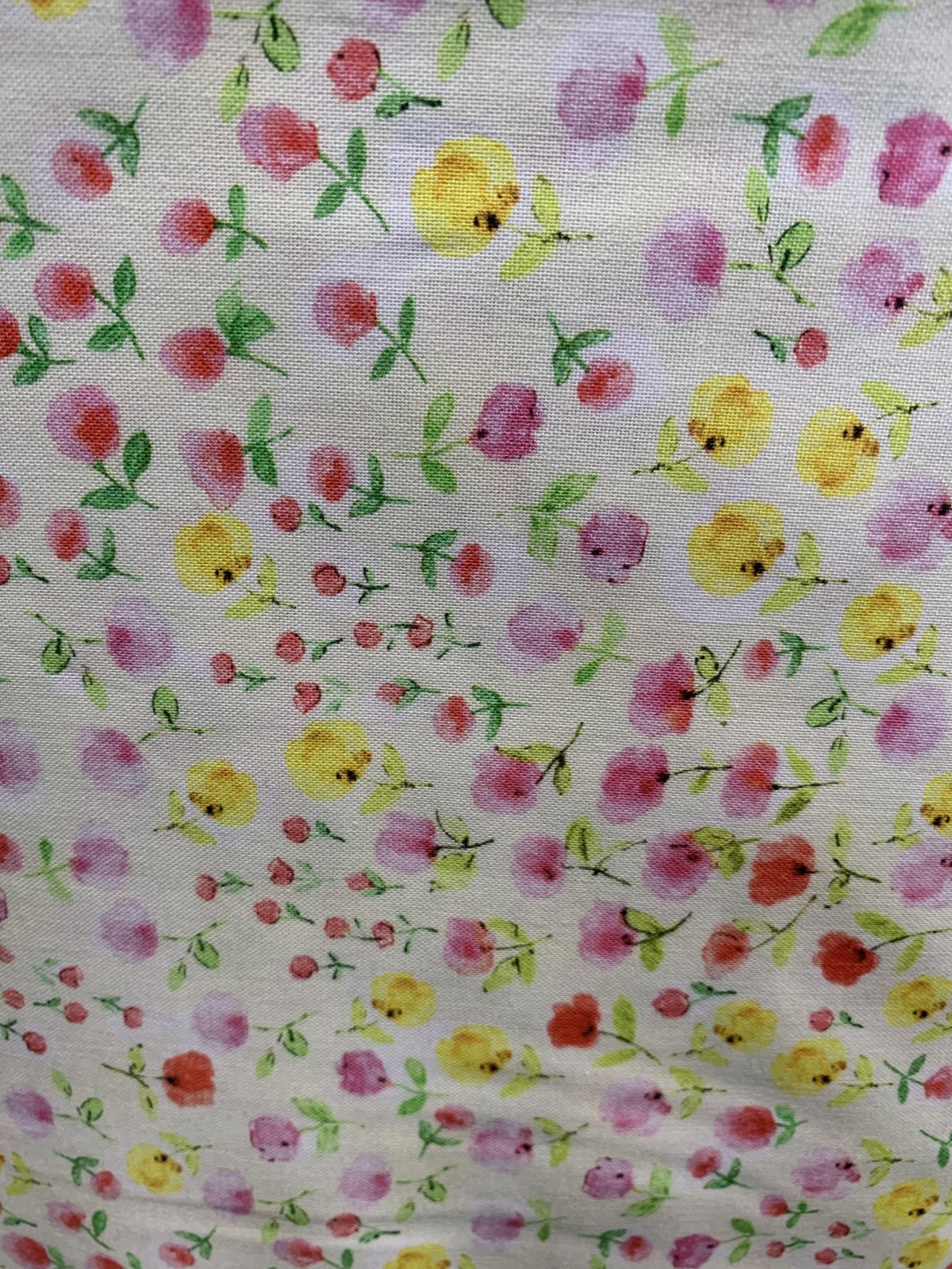 C & C  Fabric Timeless Treasures Floral