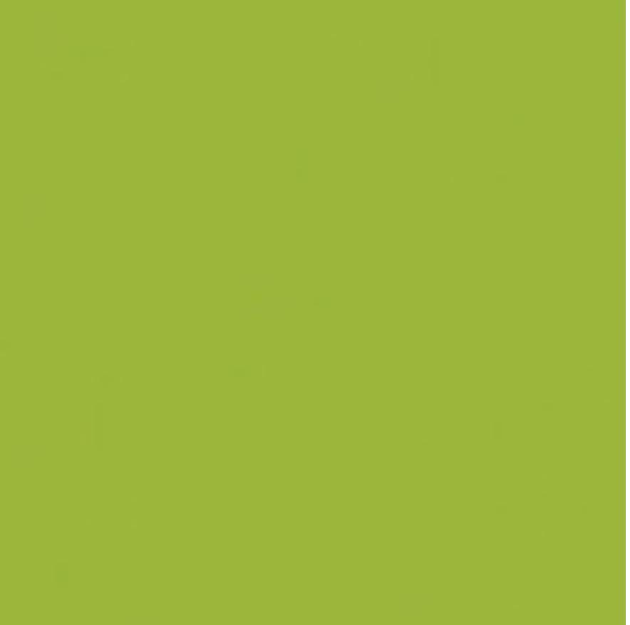 Clothworks American Made Brand Solids Light Olive