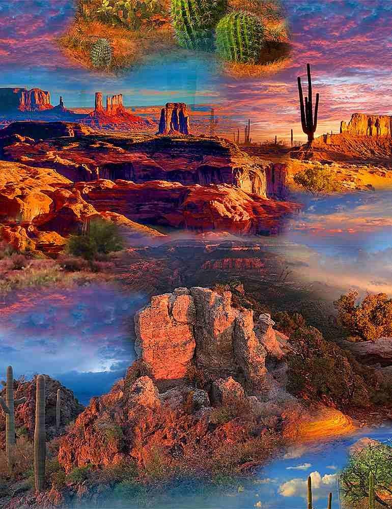 Timeless Treasures - Southwest - Multi Desert -- C8422