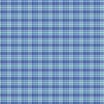 Primo Flannel - Blue Plaid