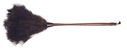 Feather Duster Ostrich 28