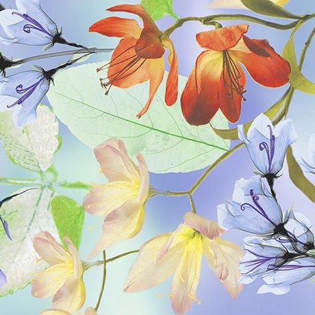 Belle-Floral Watercolor-26417-W