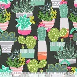 Desert Succulents Black - 101.148.01.1
