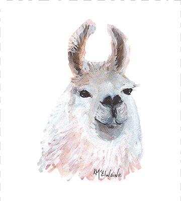 Watercolor on Kona- Llama Perfect