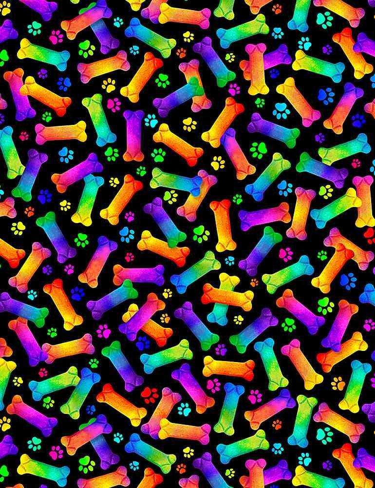 CD8835-Black Rainbow Pets / Rainbow Bones