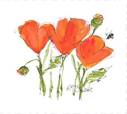 Watercolor on Kona- Poppy Perfect