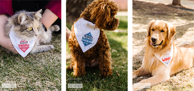 August - Fill In The Blank - Grey & White Pet Kerchief Blank + You Hade Me At FREE Deisgn!