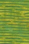 Graffetti Reeds - Green