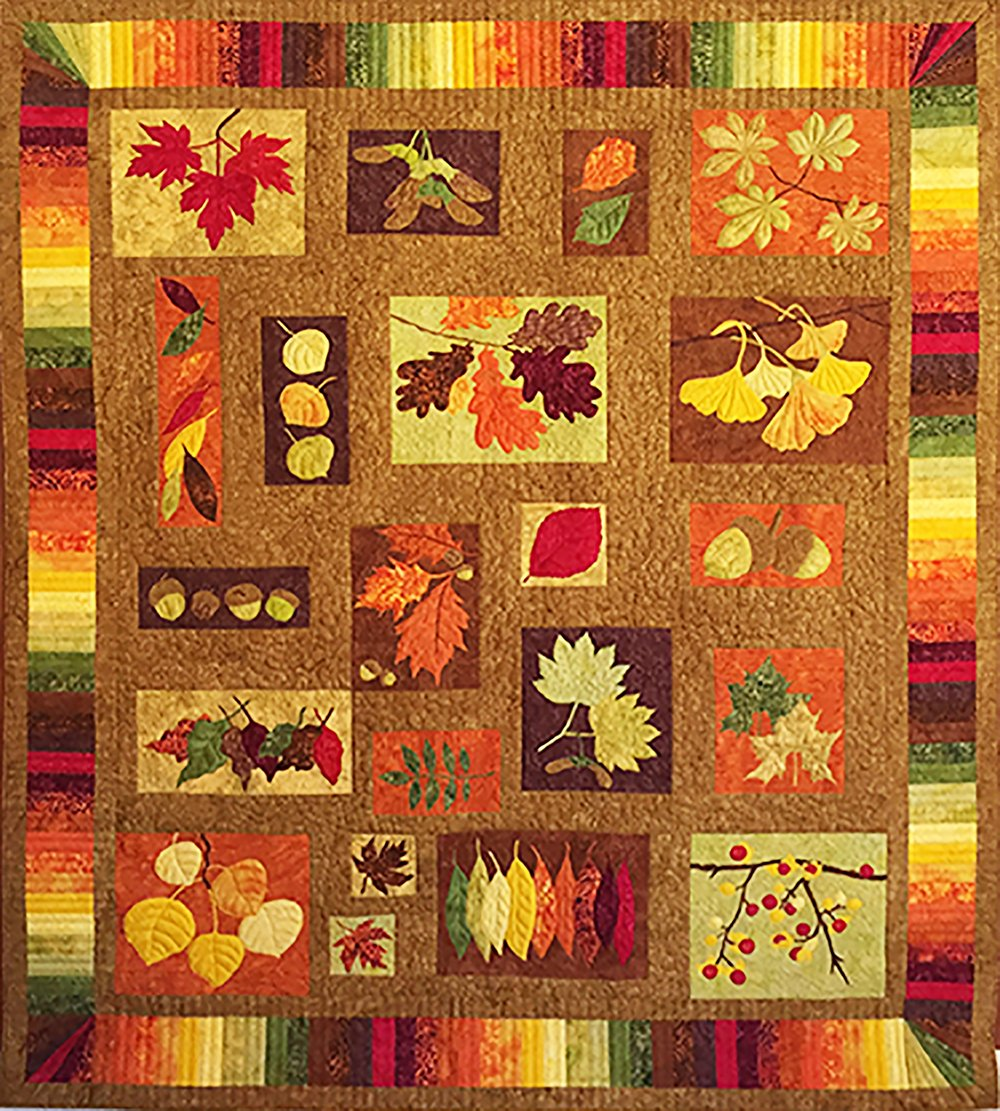 Equinox quilt pattern by 4th and 6th Designs  92x108