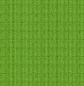 Corduroy Solid Green