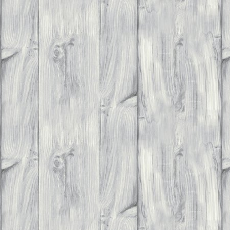Wilmington Prints A Day At The Lake Light Gray Wood Texture