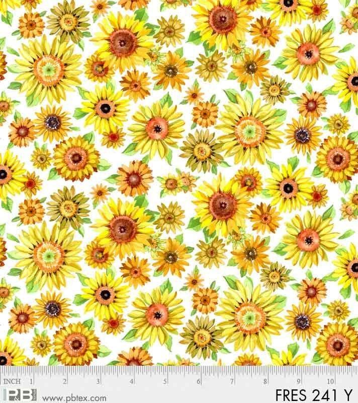 P & B Autumn Fresh Picked Farm Sunflowers