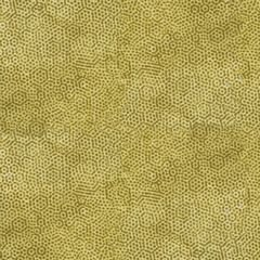 Andover Fabrics Dimple Dreams Brown Gold