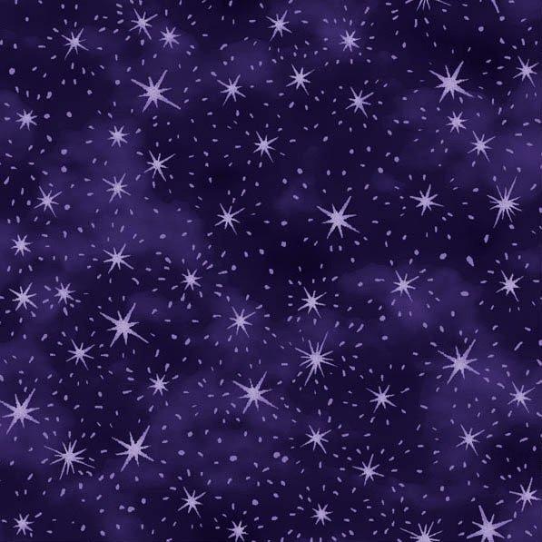 Paintbrush Studio Nite Owls Stars Purple