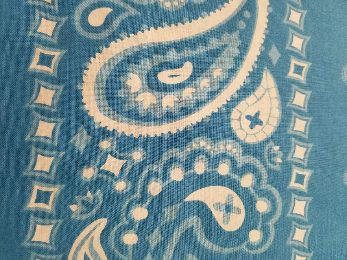 Henry Glass Cuteville County Fair by Cathy Heck Large Blue Paisley