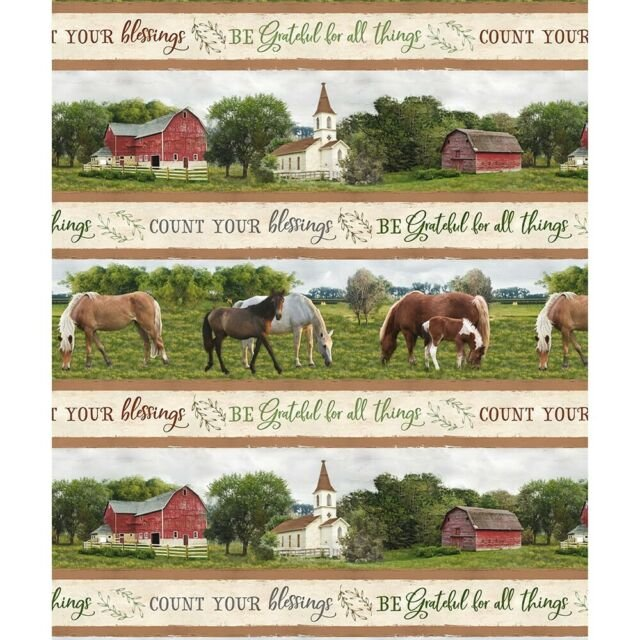 Wilmington Prints Farmstead  Striped Boarder