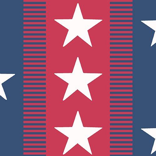 Patriotic 2017 Bunting Strip