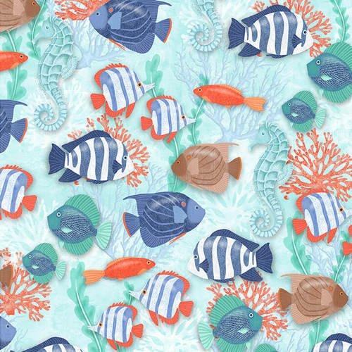 Coastal Dreams - Fish