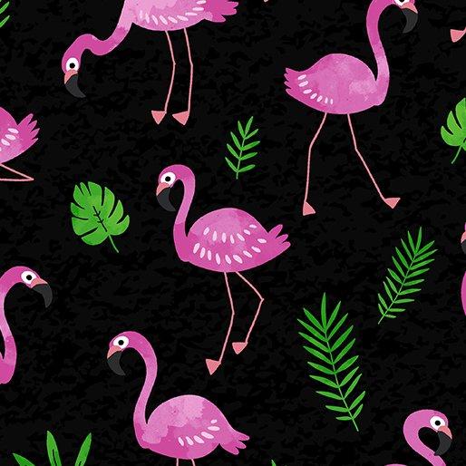 Flamingo Frenzy - Black