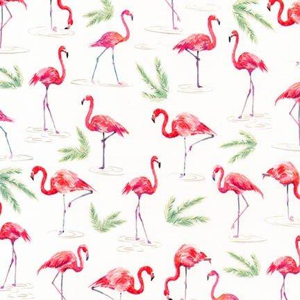 Flamingo on White