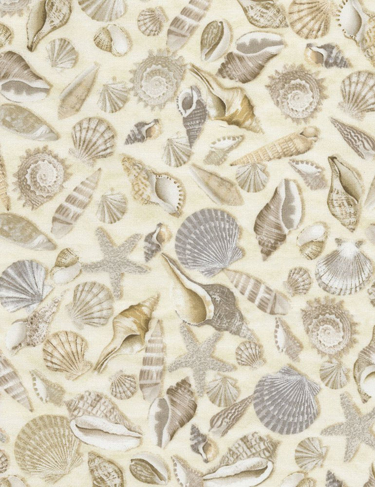 Beige Seashells
