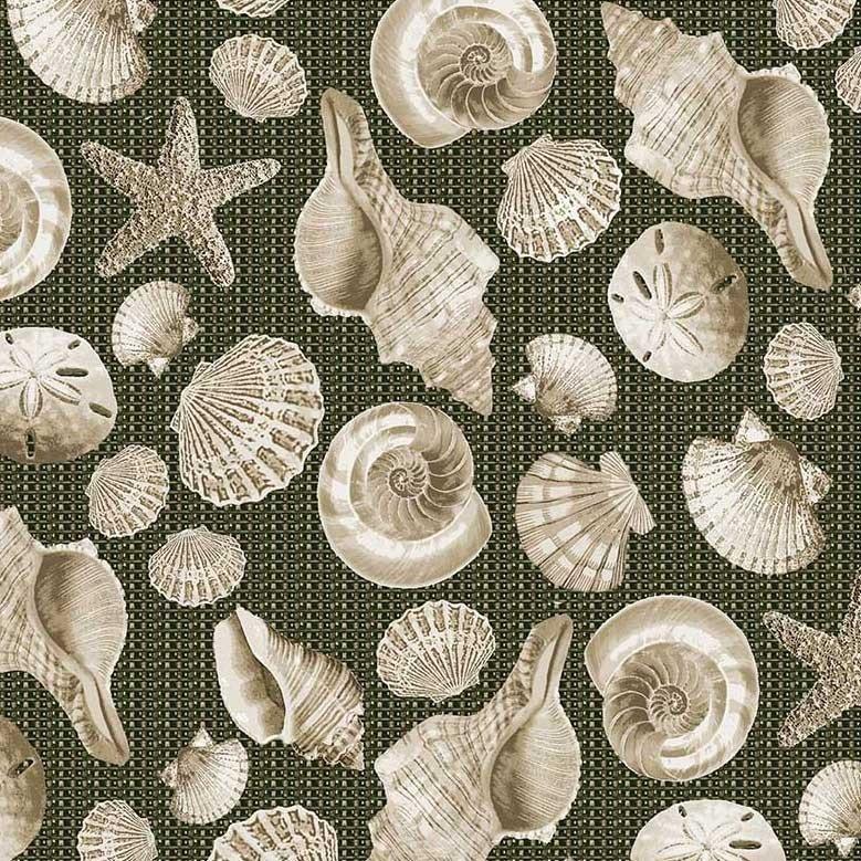 Shells - Earth