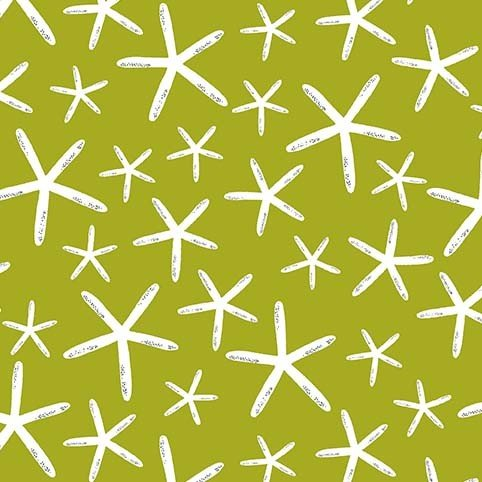 Starfish on Olive