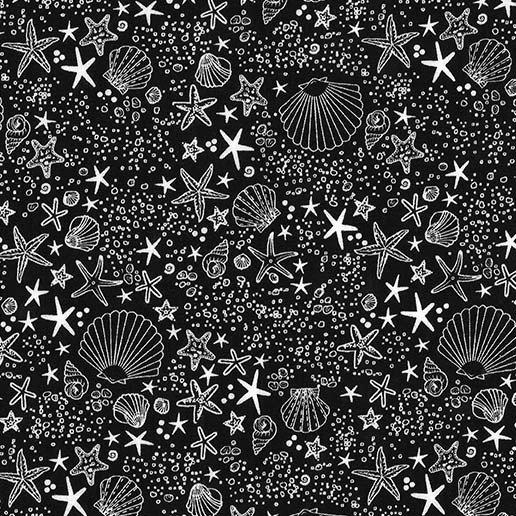 Shells -Black/White