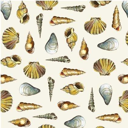 Mini Shells - Cream