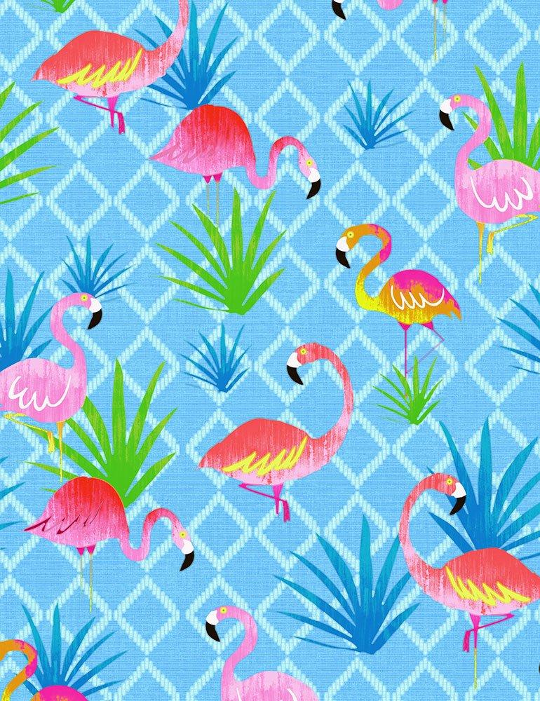 Colorful Flamingos