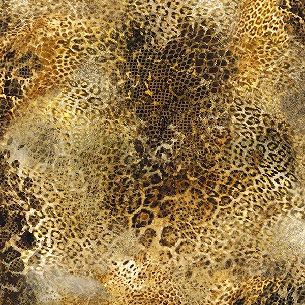 Paradise Cheetah