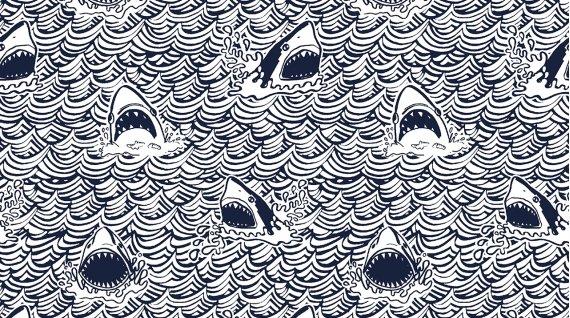 Dark & Stormy Sharks