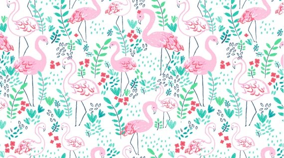Lets Flamingle - White